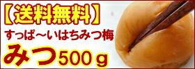 【送料無料】みつ500g