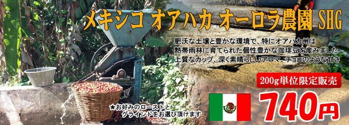 メキシコ オーロラ農園