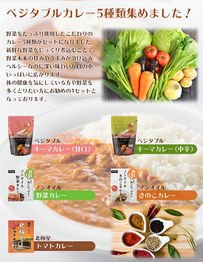 厳選 野菜カレーセット 5種類10食 詰め合わせ