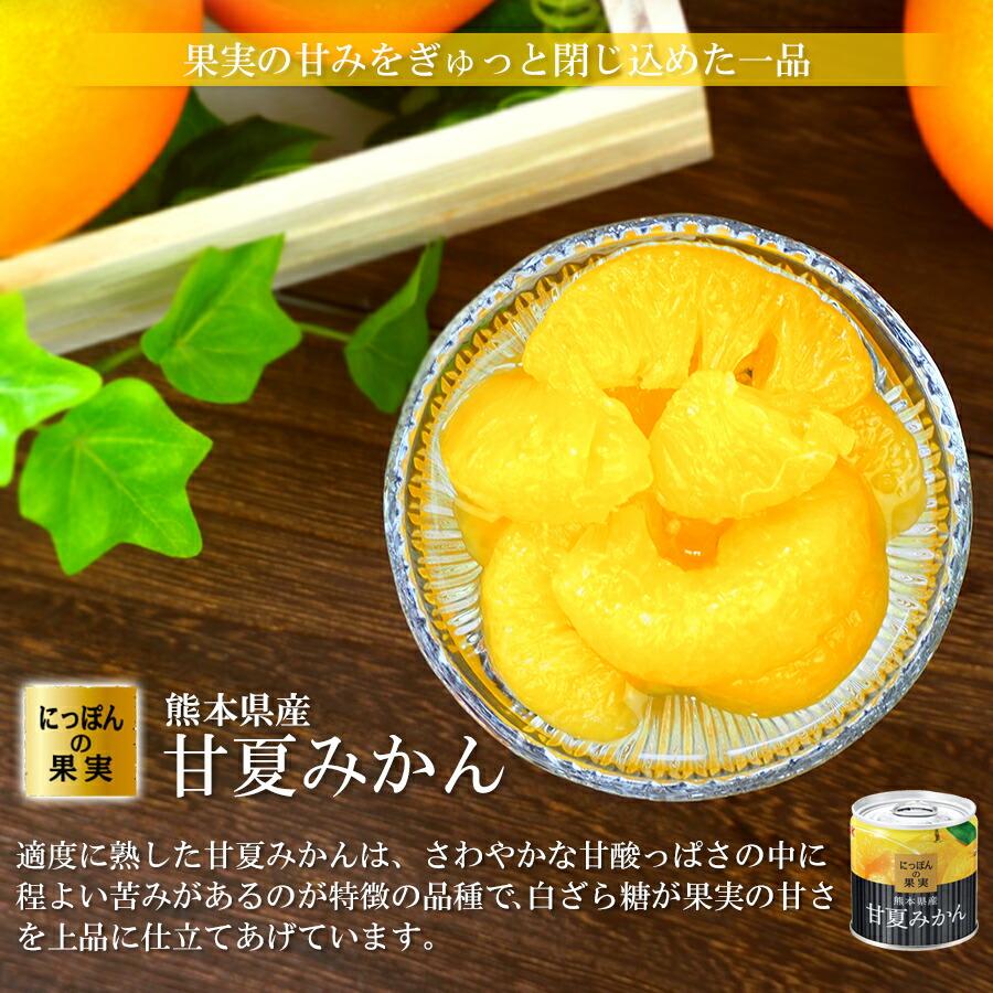 缶詰め にっぽんの果実 熊本県産 甘夏みかん 185g(2号缶) フルーツ 国産