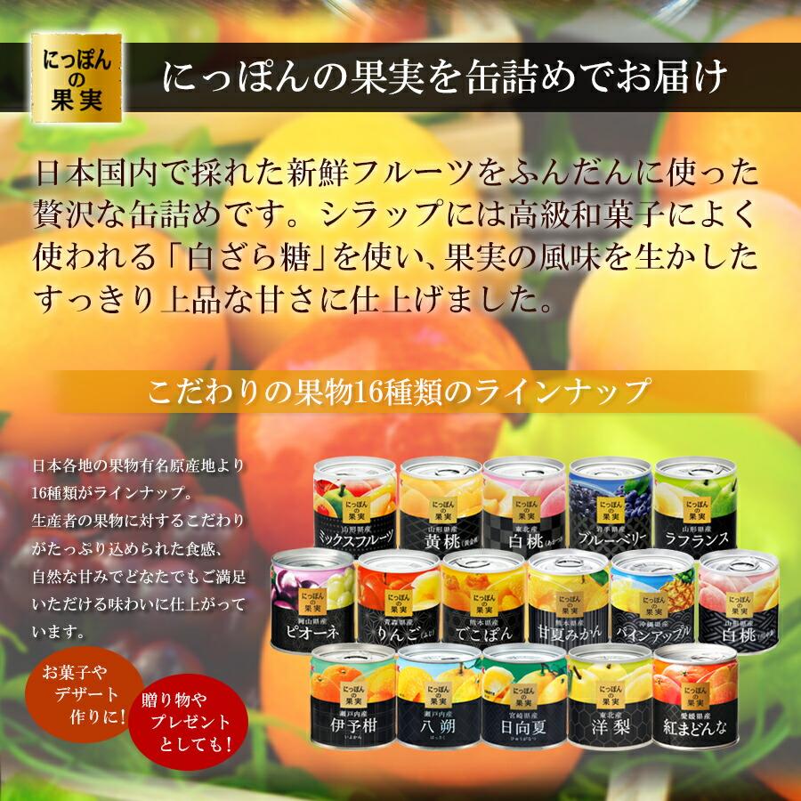 缶詰め にっぽんの果実 沖縄県産 パインアップル  195g(2号缶) フルーツ 国産