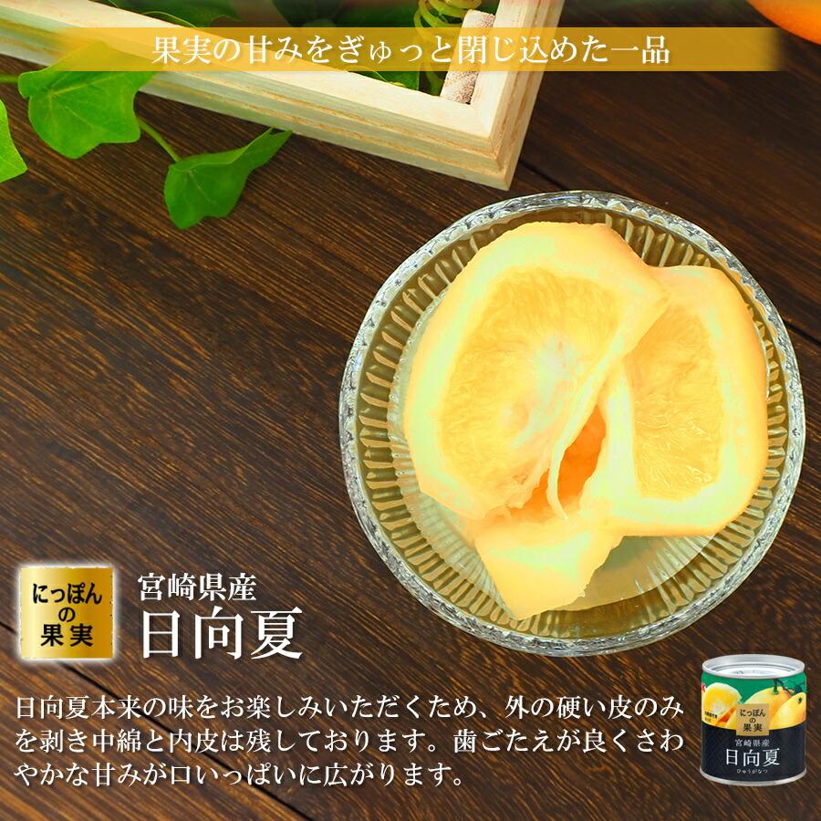 缶詰め にっぽんの果実 宮崎県産 日向夏 185g(2号缶) フルーツ 国産