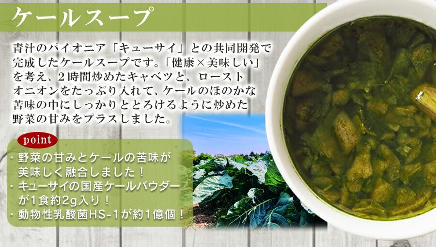 NF オニオンスープ フリーズドライ スープ