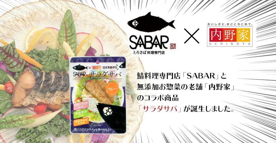 サラダ サバ uchipac カレー
