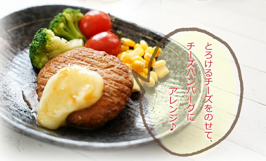 煮込みハンバーグ (豆腐入り)