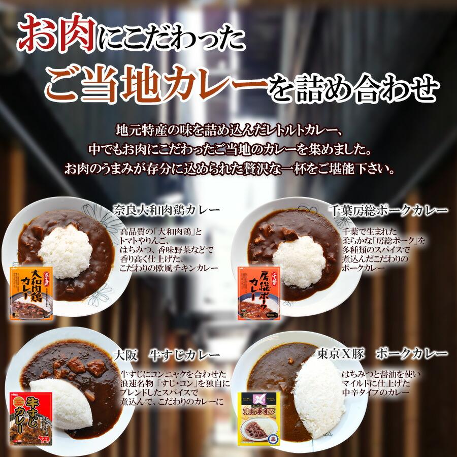 ご当地カレー レトルト お肉のカレー10種類詰め合わせセット