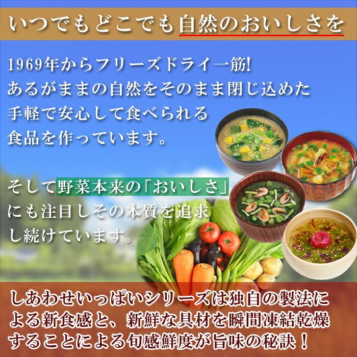 しあわせいっぱいスープセット11種22食セット