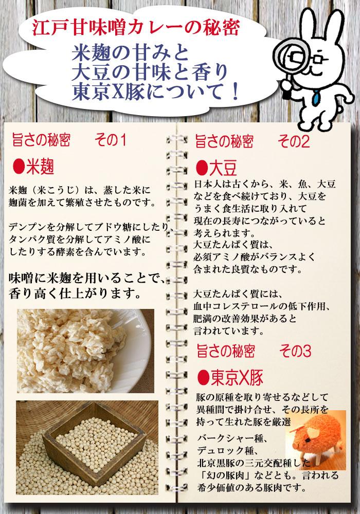 東京 江戸甘味噌カレー