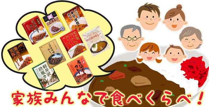 東日本 ご当地 レトルトカレー 9種類セット