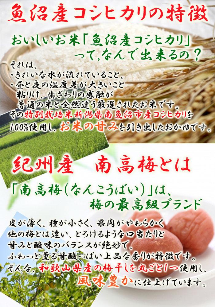 魚沼白がゆ250g (たいまつ食品)