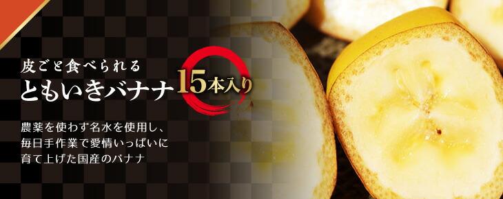 ともいきバナナ 15本入り