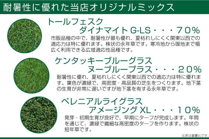 耐暑性に優れた特選ミックス バロネス寒地型芝の種 ダイヤモンドグリーン 1kg入り