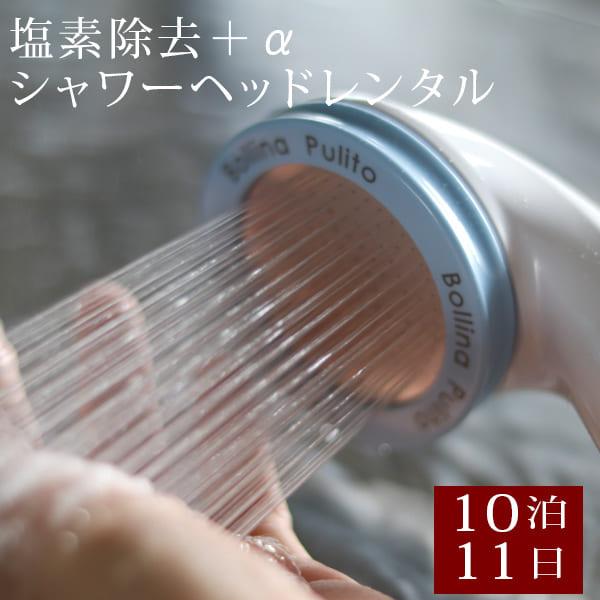 【レンタル】塩素除去シャワーヘッド「カートリッジタイプ」10日間レンタルお試し品