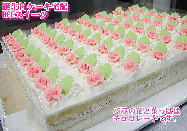 大きい誕生日ケーキ・大きいバースデーケーキ