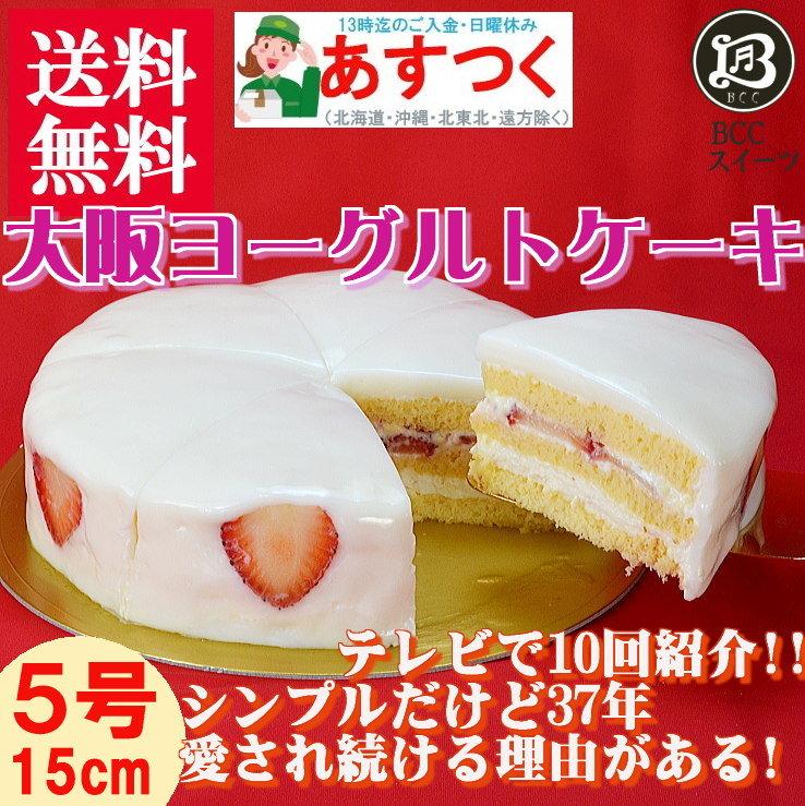 大阪ヨーグルトケーキ5号ホールケーキ