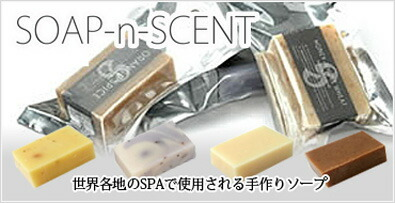 SOAP-n-SCENT ソープアンドセント