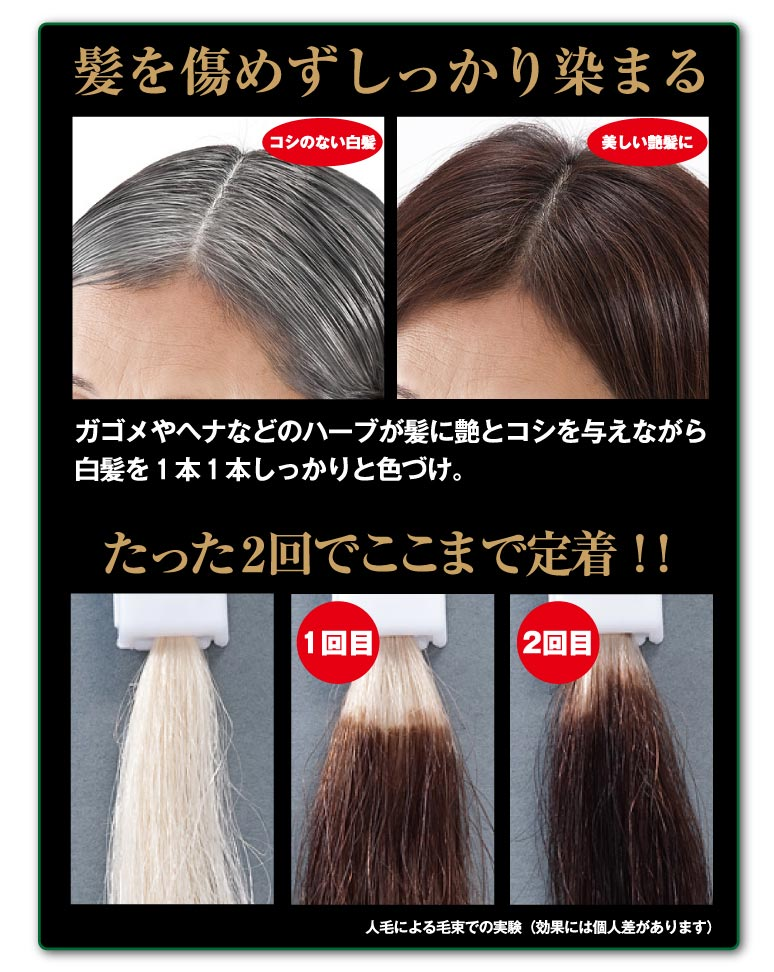 Beaurushstore Ga Gome And Henna Color Treatment Hair Color Hair