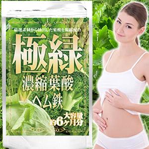 極緑濃縮葉酸ヘム鉄 大容量約6か月分