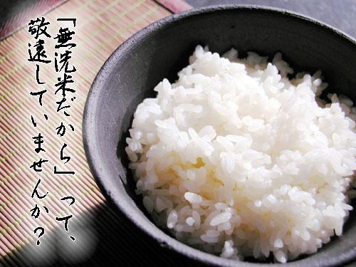 無洗米30kgおまとめ業務用送料無料