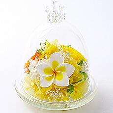 プルメリアガラスドーム