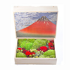 凛L赤富士
