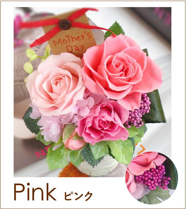 アミ ピンクの画像