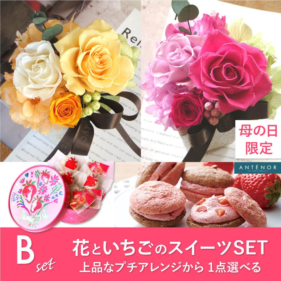 花と苺のスイーツセット【B】