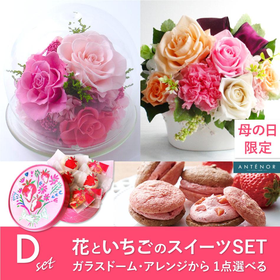 花と苺のスイーツセット【D】