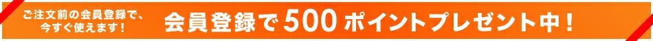 会員登録で500Pプレゼント