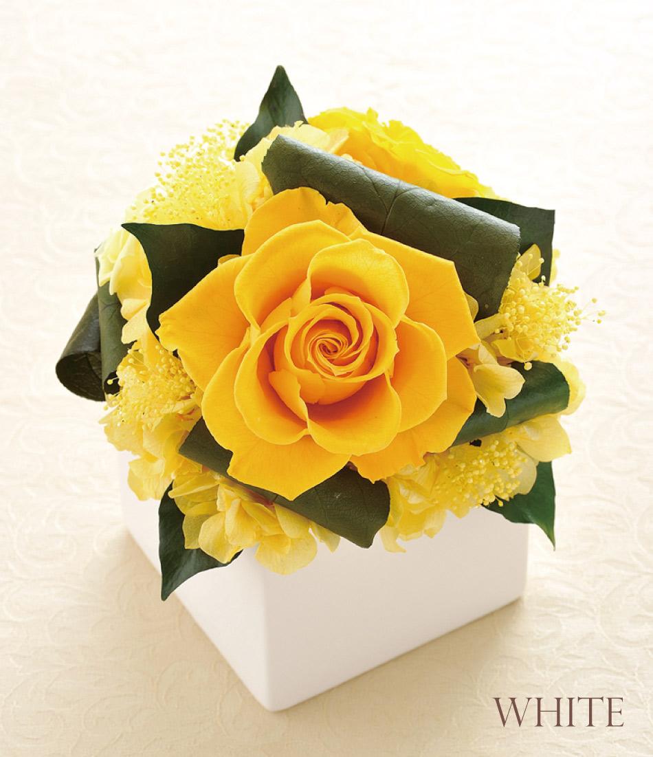 キューブS 白花器画像