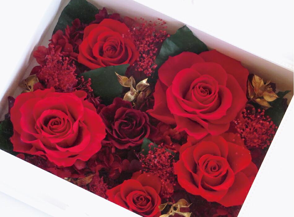 フレームL お花アップの画像