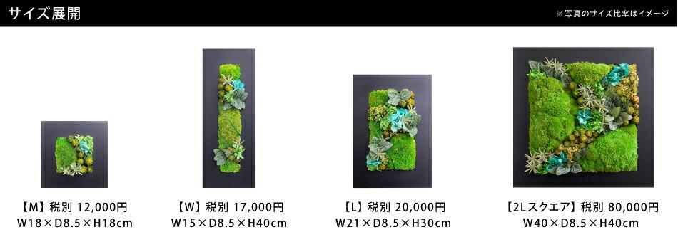 苔のグリーンフレームシリーズサイズ一覧