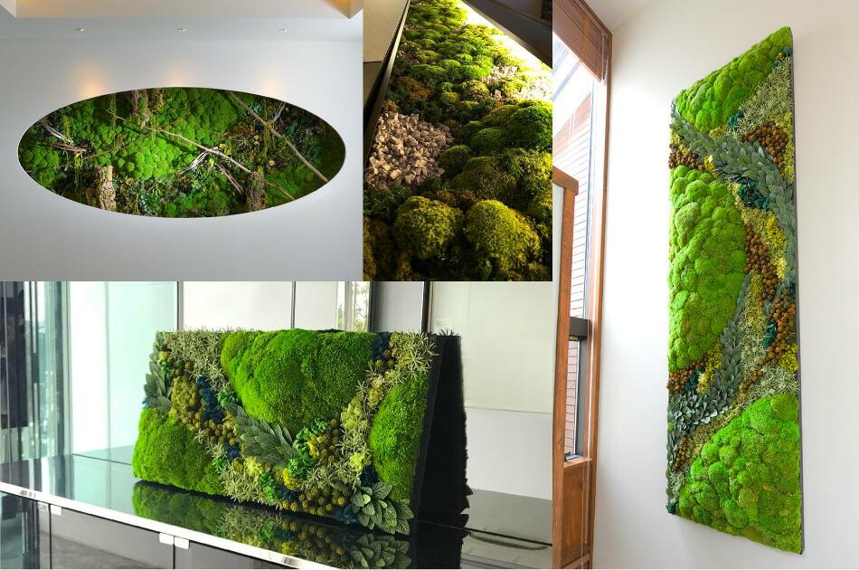 苔のグリーンウォールシリーズ