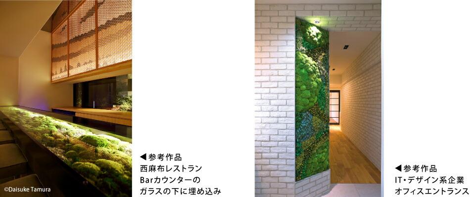 苔のグリーンウォールオーダー例