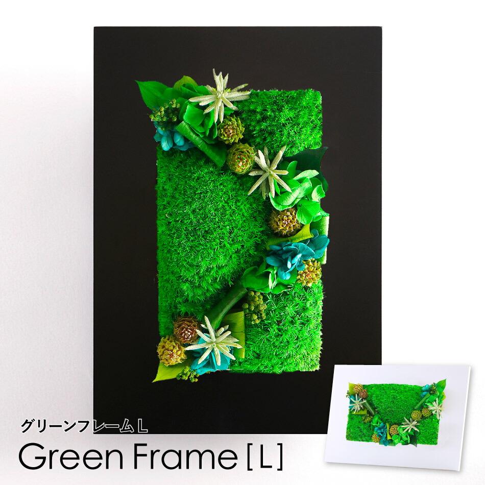 グリーンフレームLトップ画像
