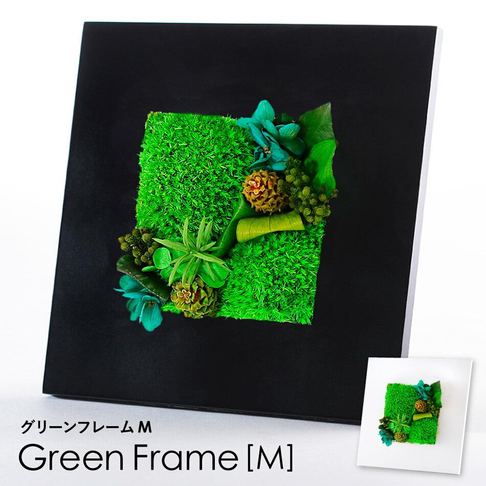 グリーンフレームMトップ画像
