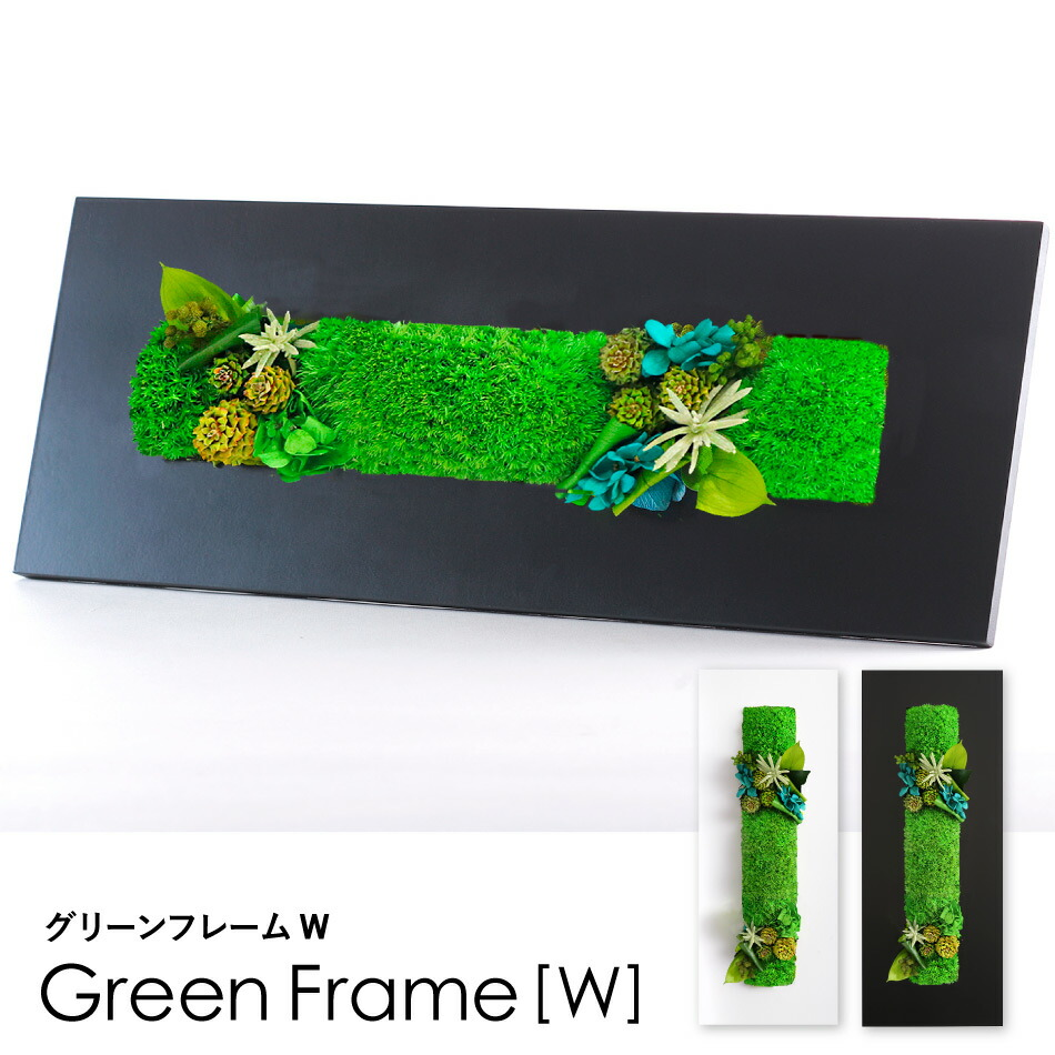 グリーンフレームWトップ画像