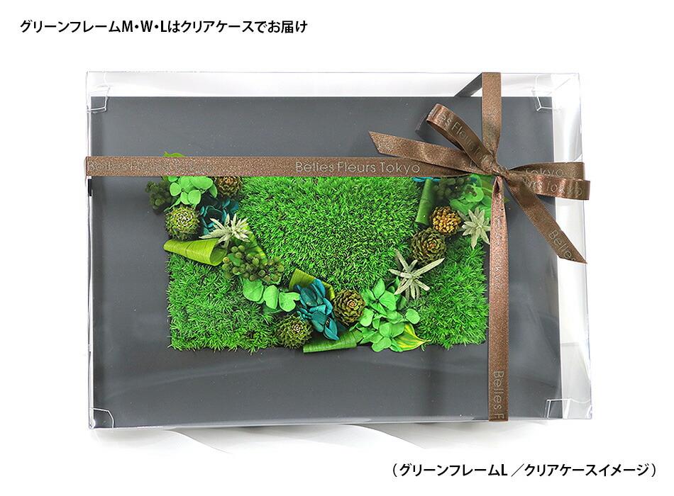 グリーンフレームクリアケースイメージ