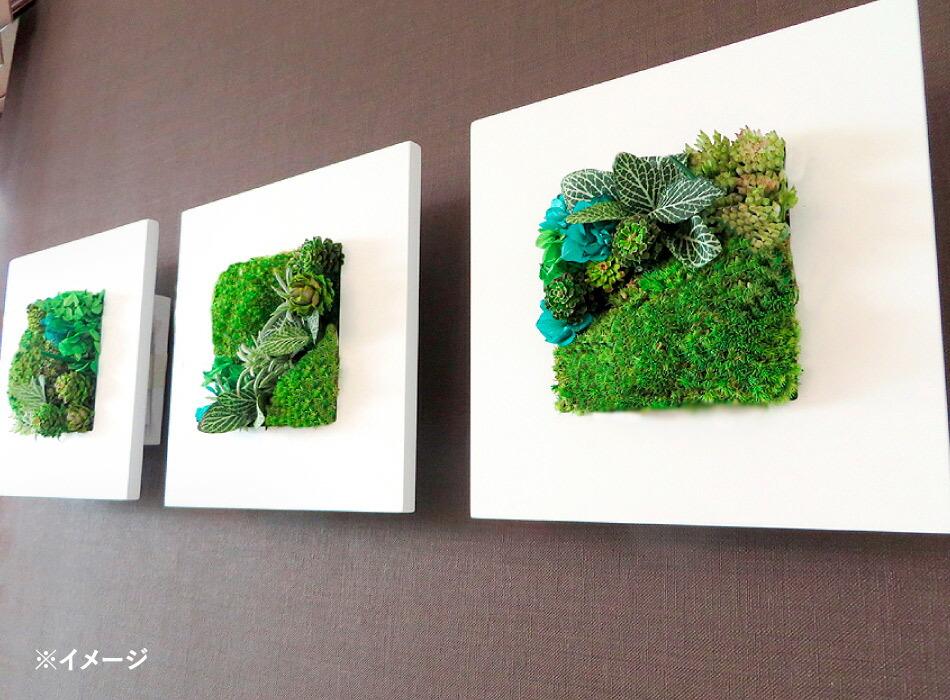 グリーンフレームフレームM3点壁掛けイメージ