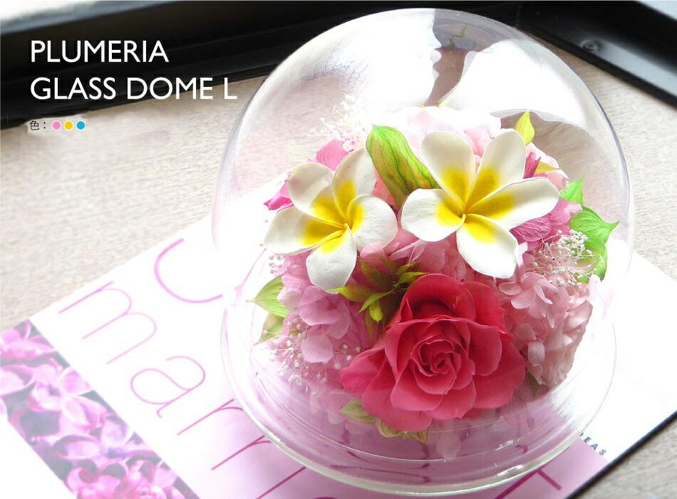 プルメリアガラスドームL
