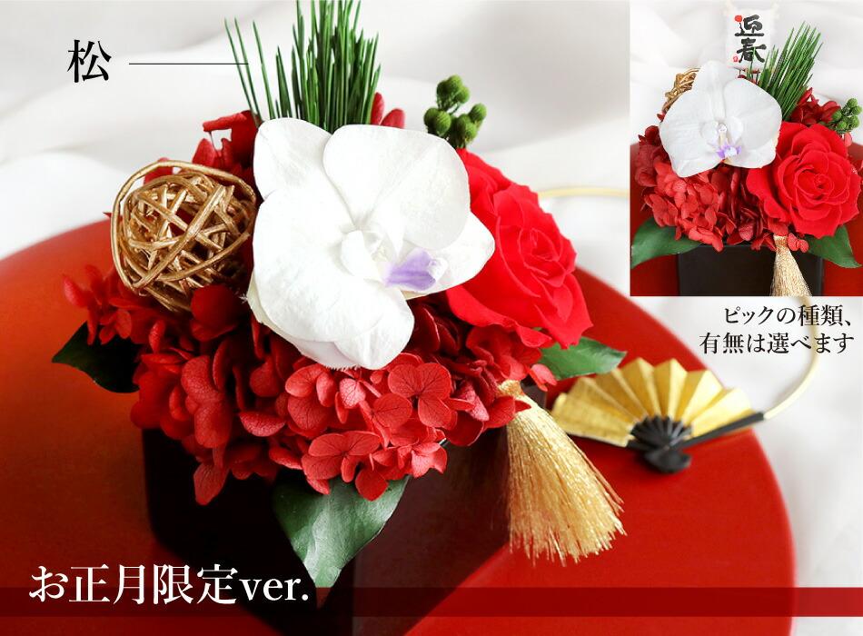 胡蝶蘭キューブS お正月限定レッド×ゴールドの画像