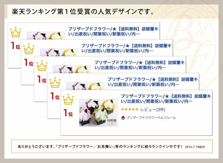 胡蝶蘭キューブS 累計販売実績の画像