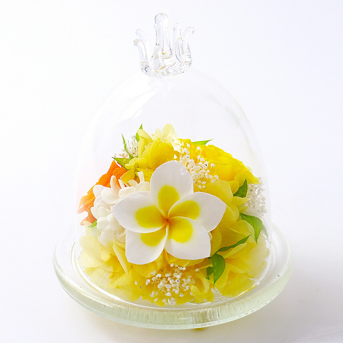 プルメリアガラスドームS