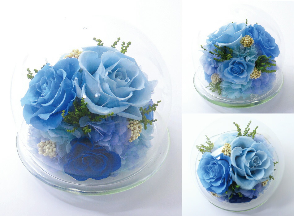 ガラスドームL ブルーの画像