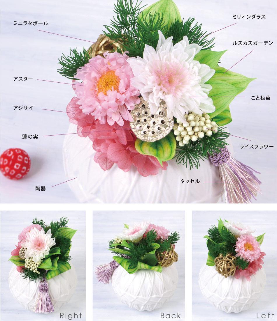 蓮華 お花の種類の画像