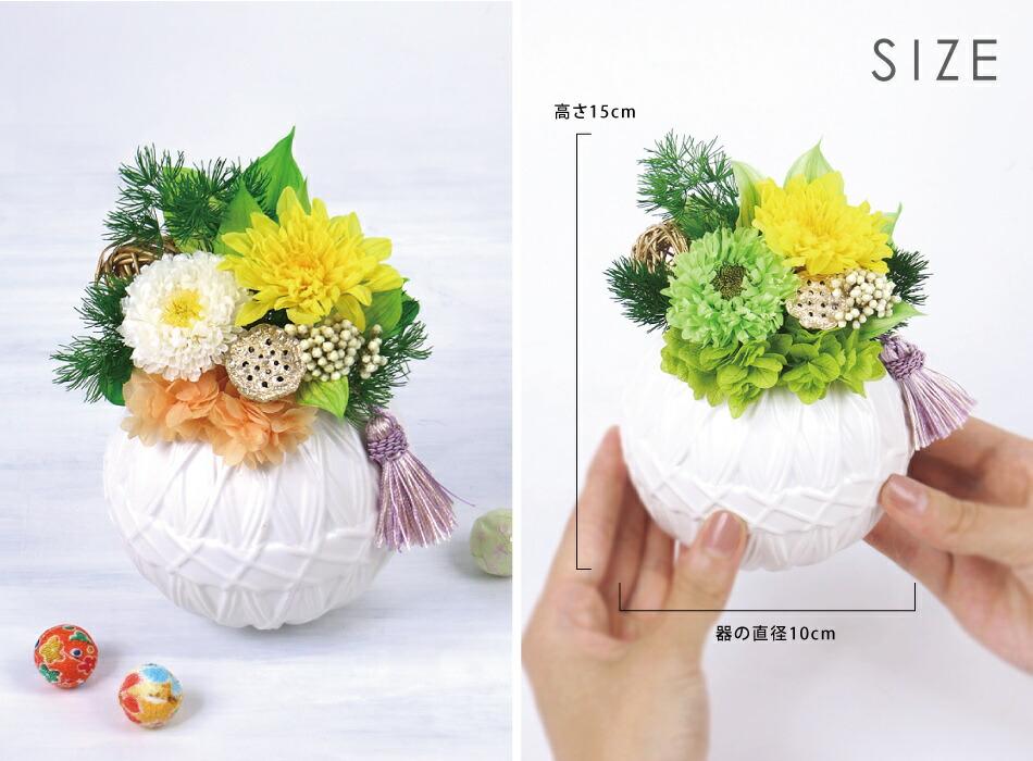 鞠花 サイズ画像
