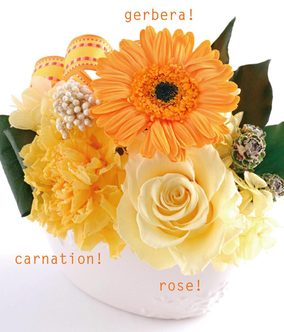ミグノン お花の案内画像
