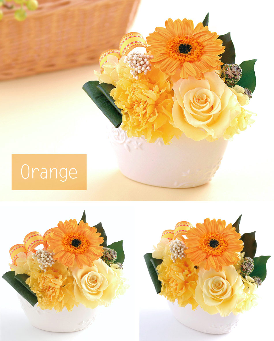 ミグノン オレンジの画像