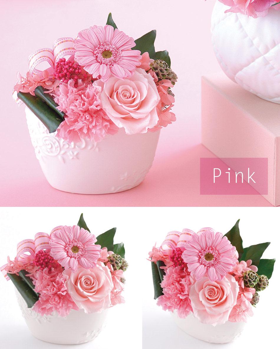 ミグノン ピンクの画像