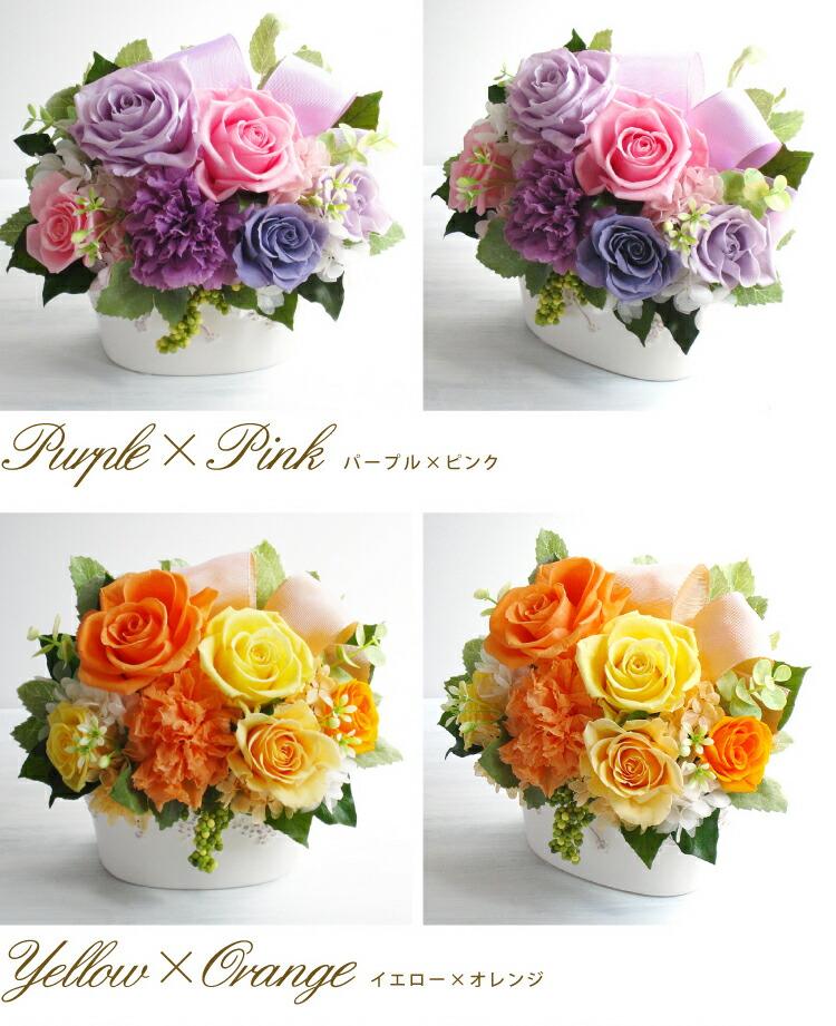 プリンセス パープルピンクとイエローオレンジの画像